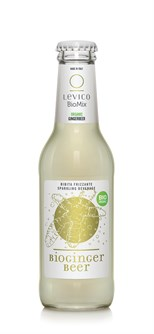 GINGER BEER BIO LEVICO 200 ML